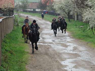 Hét lovas nevezett be a lófuttatásra